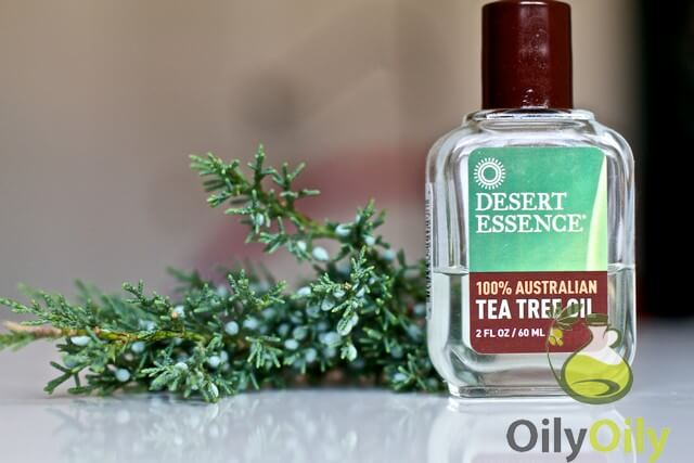Try Tea Tree Oil