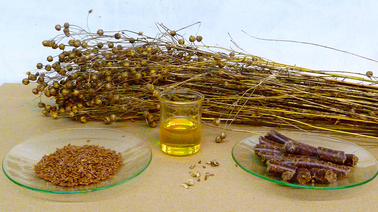 Is Flaxseed Good for You