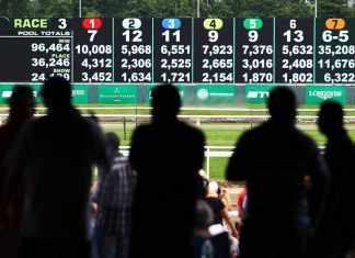 Betting Odds And Payoffs of Horse Racing
