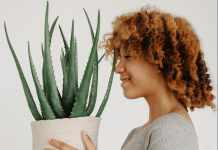 benefits of aloe vera on face