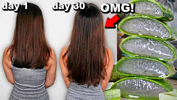 Aloe Vera Good for Hair: How to Use Aloe Vera for Hair Growth